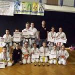 Karate királyok