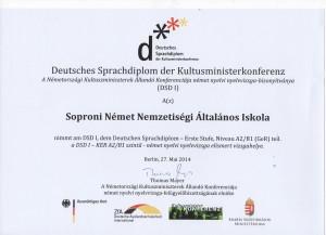DSD 001