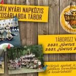 LÁNYOK FIGYELMÉBE! 24. Nyári Napközis Kosárlabda Tábor a Soproni Darazsak szervezésében