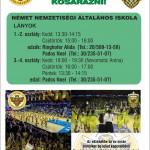 Kosarazz a Soproni Darazsak csapatában
